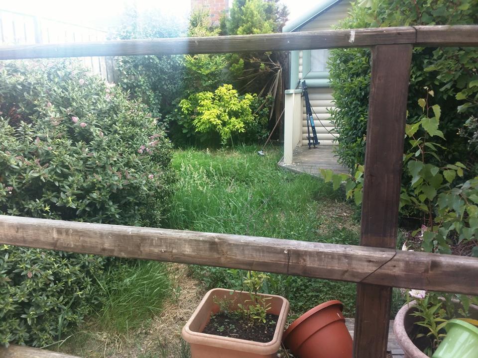 Garden also untouched